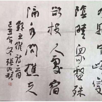 张改琴书法作品横幅