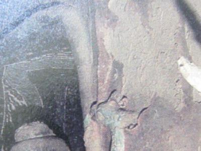 敦煌北朝艺术中形态各异的凤鸟纹饰(图)